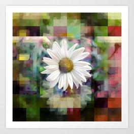 Monday 18 March 2013: asteraceae, compositae, rhythm sum Art Print