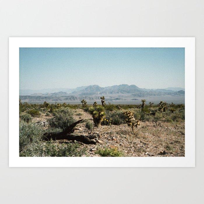 Nevada Desert Scene Art Print