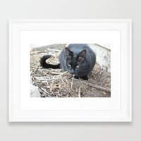 mew Framed Art Prints featuring mew by Dottie