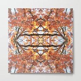 Abstract Fall Mandala 1595 Metal Print