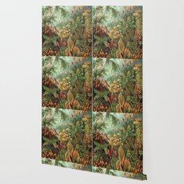 Vintage Plants Decorative Nature Wallpaper