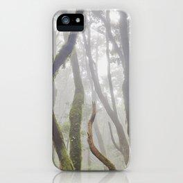 Dream Woods. Garajonay National Park. iPhone Case