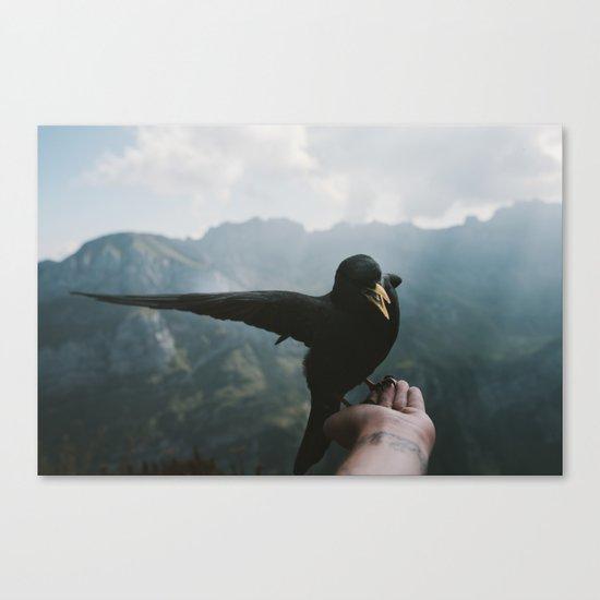 A wild Bird - landscape photography Canvas Print