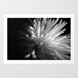 {beauty in darkness} Art Print
