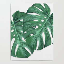Monstera Tropical Leaf Painting Poster