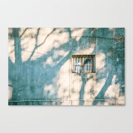 shadow on window Canvas Print