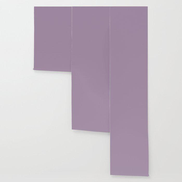 Dark Chalky Pastel Purple Solid Color Wallpaper