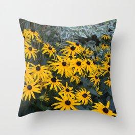 Black Eyed Susans in Bloom Throw Pillow