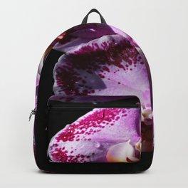 My Tender Love Backpack