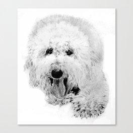 Labradoodle Canvas Print