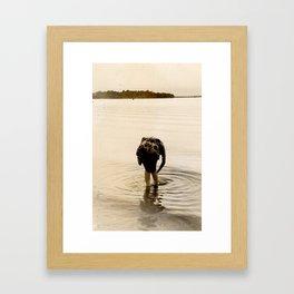Dirty Fish Bait Framed Art Print