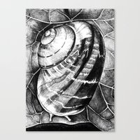 snail Canvas Prints featuring Snail by MARIA BOZINA - PRINT
