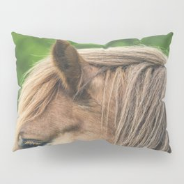 Horse hair Pillow Sham