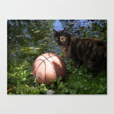 Basketball - Color Canvas Print