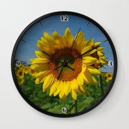 Sunflower soloist (with backup chorus!) Wall Clock