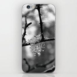 Microcosm iPhone Skin
