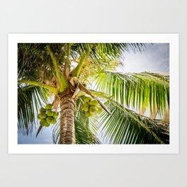 Sunny Palm Tree Art Print
