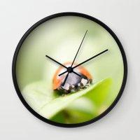 ladybug Wall Clocks featuring Ladybug by Christine baessler