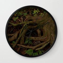The Gaian gymnosperm Wall Clock