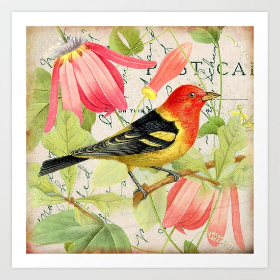 Vintage Bird #4 Art Print