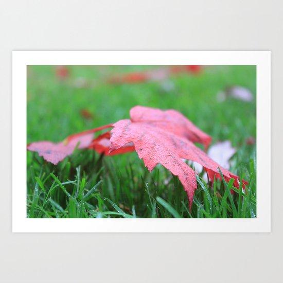 Dewy Leaves & Blades of Grass Art Print