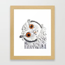 Curious owl Framed Art Print