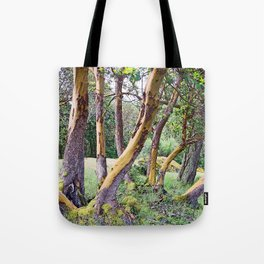 MAGIC MADRONA FOREST Tote Bag