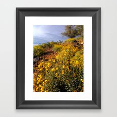 Desert in Bloom Framed Art Print
