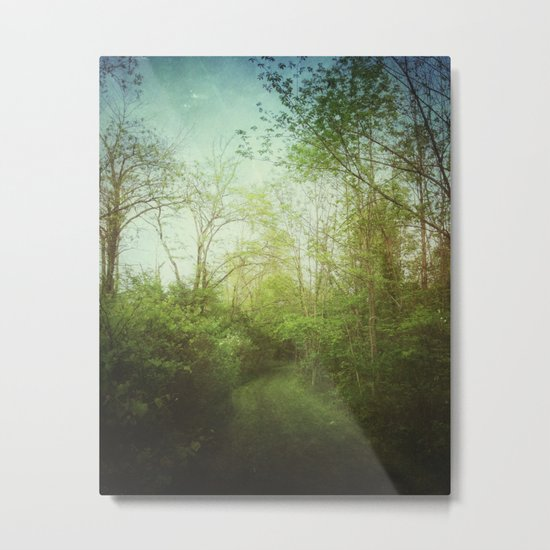 Follow Your Life Path Metal Print