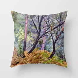Windy Sunrise. Ferns. Sierras De Cazorla, Segura Y Las Villas Natural Park Throw Pillow