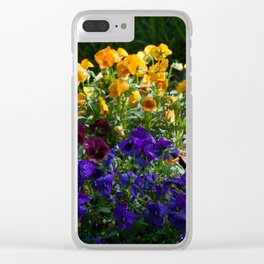 A bed of colorful pansies Clear iPhone Case