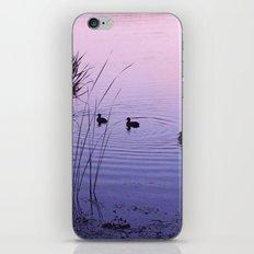 The Lake II iPhone & iPod Skin