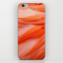Flamingo Feathers iPhone Skin