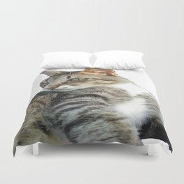 Tabby Cat Isolated Background Duvet Cover