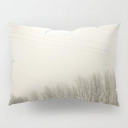 Winter 4 Pillow Sham