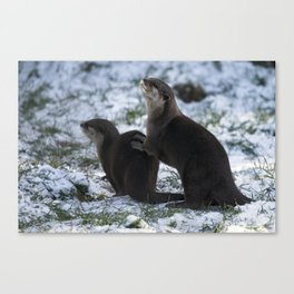Otters In The Snow Canvas Print