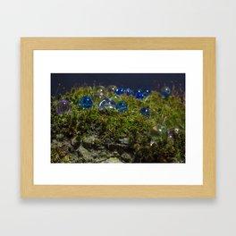 Moss Crystals #3 Framed Art Print