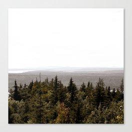 Acadia Views Canvas Print