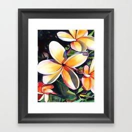 Kauai Rainbow Plumeria Framed Art Print