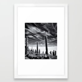 incahuasi island Framed Art Print