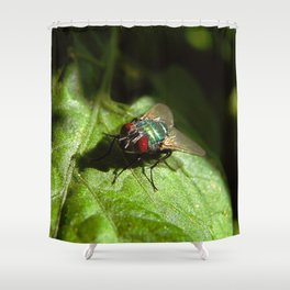 But A Fly Shower Curtain