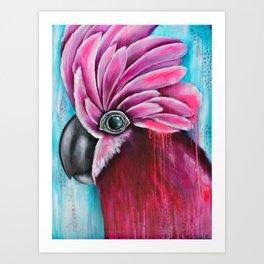 Pink Galah Art Print