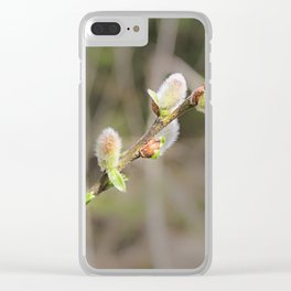 Fluffy willow branch. Clear iPhone Case