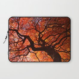 Ephemeral - Fall Maple Leaves, Nature Photography Laptop Sleeve