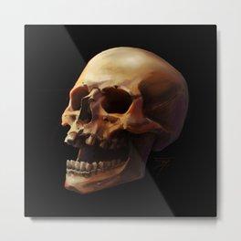 Carpe Diem. Skull Painting Metal Print