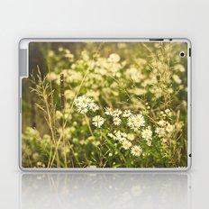 Daisies in Autumn Laptop & iPad Skin