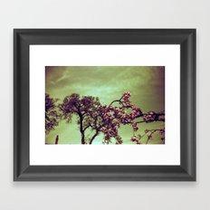 Redscale Blossom Framed Art Print