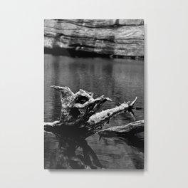 Just A Trunk Metal Print
