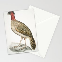 Pennants Horned Pheasant (Satyra Pennatii) from Illustrations of Indian zoology (1830-1834) by John Stationery Cards