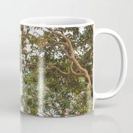 Climbing Hills in San Francisco Coffee Mug